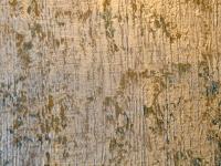 decorative-faux-painting-classes-dsc_8034