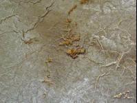 pompeiicracklepulloff